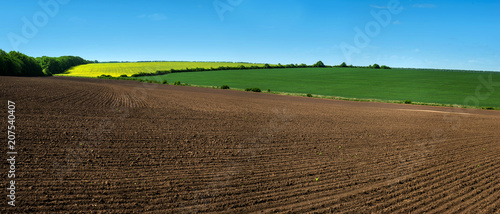 farm field lines of arable land and rapeflowerfield landscape Fototapete