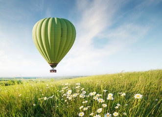 FototapetaAir ballon above field with flowers at the summer time. Concept and idea of adventure