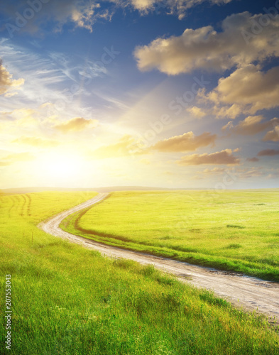 Poster de jardin Jaune Road lane and deep blue sky