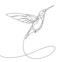 Humming Bird Continuous Line V...