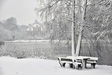 Winter Park De Mik