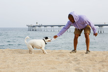 Happy Young African-American Man Hipster In Sport Hoody Playing With His Dog On The Beach At Sunny Day