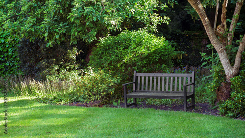 An empty wooden park bench under the tree in english garden setting Wallpaper Mural