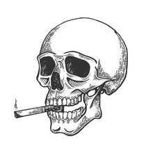 Skull Smoking Cigarette Engrav...