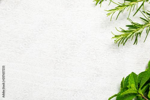 Fresh garden herbs background. Selective focus. Canvas Print