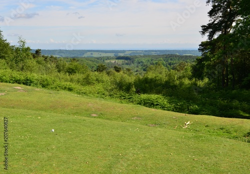 Foto op Canvas Pistache Looking down at the Sussex countryside from Leith hill in Surrey.