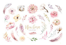 Watercolor Boho Floral Wreath With Cotton And Peonies . Bohemian Natural Frame: Leaves, Feathers, Flowers, Isolated On White Background. Peony Decoration Illustration. Save The Date, Weddign Design