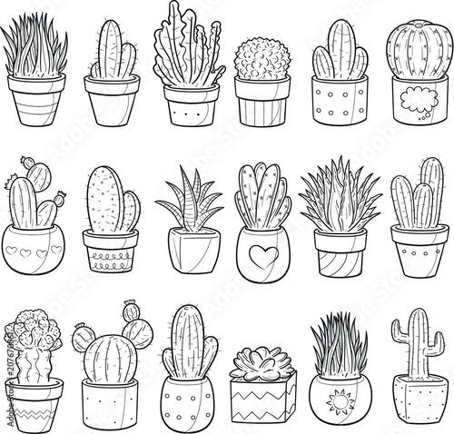 Succulent Cactus Plant Decor Doodle Icon Hand Draw Line Art Buy