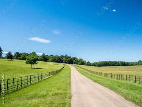 Obraz na plátně A road running between green fields or meadows beneath a blue sky