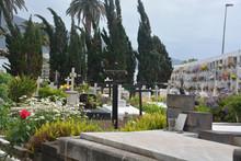 Cementerio En Puerto De La Cruz, Tenerife
