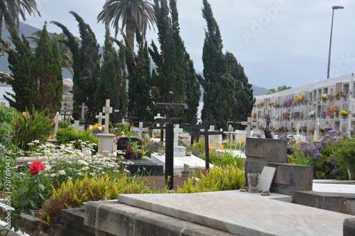 Keuken foto achterwand Begraafplaats cementerio en Puerto de La Cruz, Tenerife