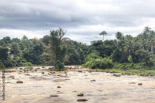 Papiers peints Kaki River landscape in Pinnawala, Sri Lanka.