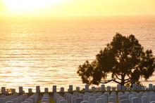 Sunset At Fort Rosecrans Natio...