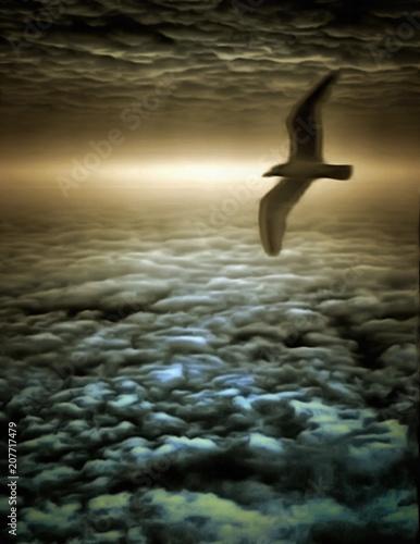 Photo  Thunderbird