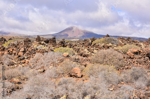 Foto op Aluminium Donkergrijs Landscape in Tropical Volcanic Canary Islands Spain
