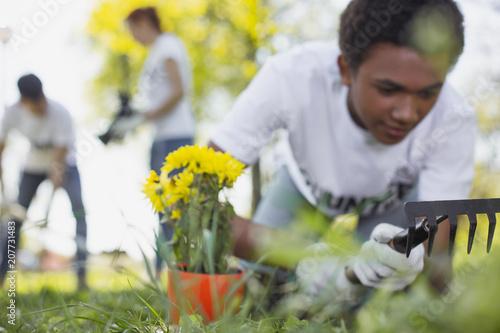 Photo City garden