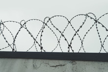 The Tangle Barb With Gray Sky. The Fence At The Prison. Holocaust