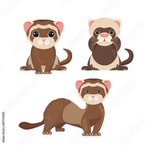 Ferret polecats in cartoon style, funny emoji faces vector Fototapeta