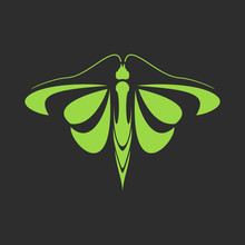 Sign Of A Green Butterfly On A Black Background