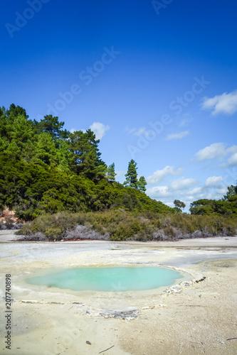 Poster Oceanië Green lake in Waiotapu, Rotorua, New Zealand