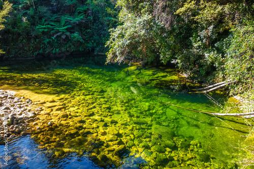 Poster Oceanië River in Abel Tasman National Park, New Zealand