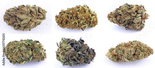 Fotografía Cannabis e marijuana con alto cbd e basso thc - fiore - droga leggera da fumare