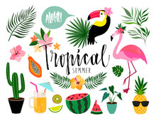 Tropical Summer Elements Collection With Hand Lettering