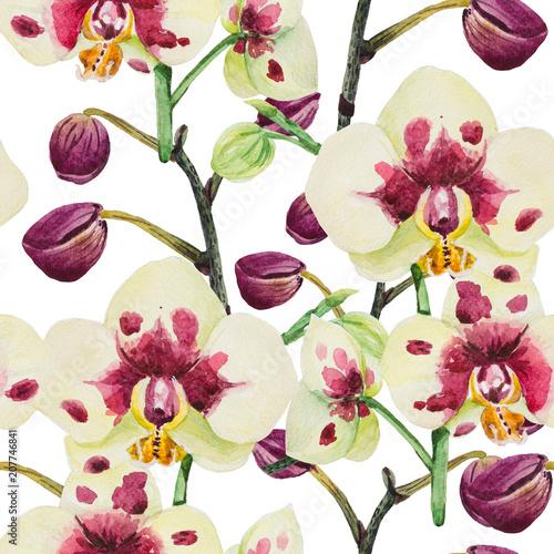 bez-szwu-wzor-jest-w-akwarela-w-dobrej-rozdzielczosci-kompozycja-sklada-sie-z-kwiatostanu-storczykow-phalaenopsis