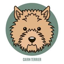 Portrait Of Cairn Terrier. Vec...