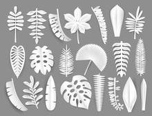 Tropical White Paper Cut Leaves. Trendy Summer Exotic Plants Elemets With Shadow Isolated On Grey Background. Origamy Style Vector Illustration.