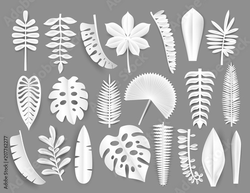 Fototapeta Tropical white paper cut leaves. Trendy summer exotic plants elemets with shadow isolated on grey background. Origamy style vector illustration. obraz