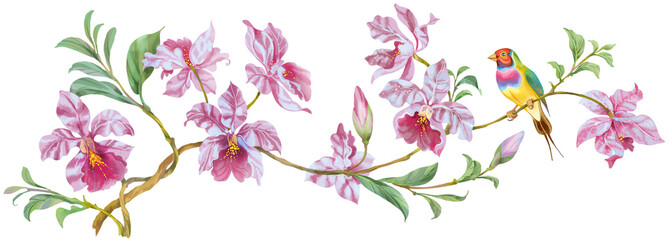 Panel Szklany Do kuchni Flowering branch of orchids with colorful bird isolated.Perfect for greeting