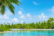 Tropical lagoon scenery with coconut palm trees and blue sky. Exotic summer destination.