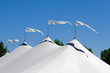 canvas print picture - Four Pennants Waving in Air on White Tent