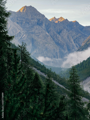 Foto op Aluminium Alpen Morning in a mountain valley in the swiss alps
