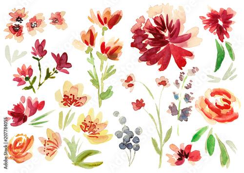 Flowers II - 207784055