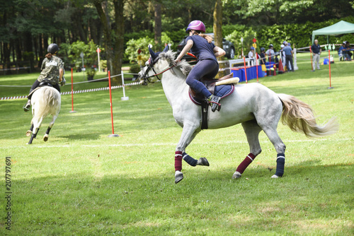 La pose en embrasure Equitation mounted games