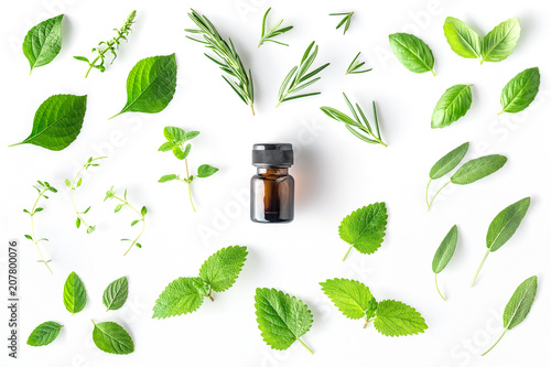 Bottle of essential oil with fresh herbs and spices basil, sage, rosemary, oregano, thyme, lemon balm  and peppermint setup with flat lay on white background