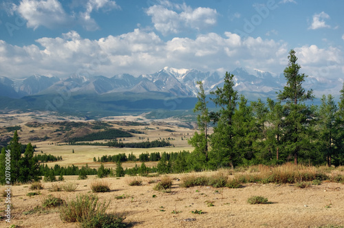 Stampa su Tela Dry desert steppe on a highland mountain plateau with yellow grass trees with ra