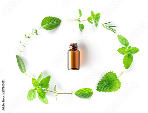 Collection of fresh herbal sage, rosemary, oregano, thyme, lemon balm spearmint and peppermint setup with flat lay on white background