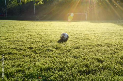 Im Sommer auf einem leeren Fußballplatz. Der Rasenplatz hat am Spielfeldrand keine Werbung angebracht. Ländliche Gegend im Sauerland - 207804213
