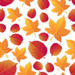 Autumn seamless background with leaves. Change of seasons of the year. Trees lose their foliage.