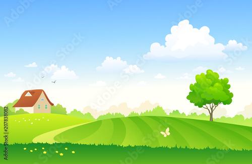 Cartoon farm field