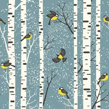 Snowy Birch Trees And Birds On...