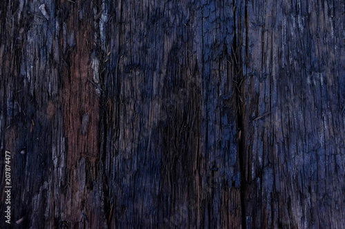 Foto op Aluminium Brandhout textuur Close-up of Dark wood texture background with old natural pattern,Firewood surface.