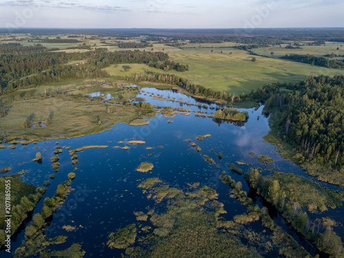 Fotobehang Nachtblauw drone image. country lake surrounded by pine forest and fields from above