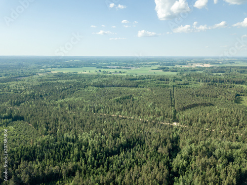 Spoed Foto op Canvas Khaki drone image. gravel road surrounded by pine forest from above