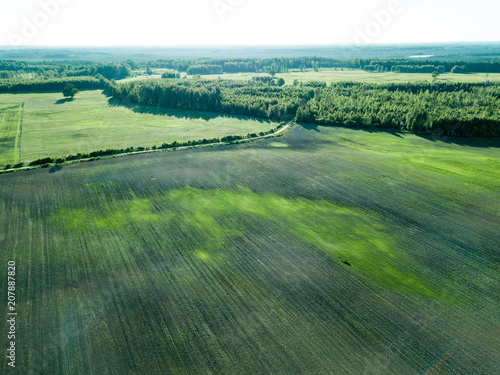 Fotobehang Olijf drone image. aerial view of empty cultivated fields