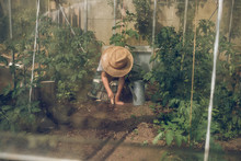 Kid Working In Greenhouse