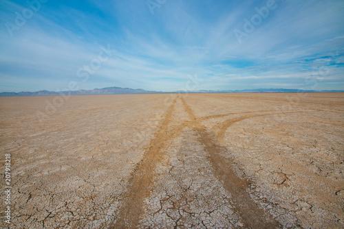 Fotografie, Obraz  Divergent Tire Tracks in Dry Lake Bed